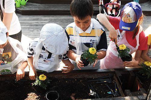 De Ziua Internationala a Igienei Mainilor (5 mai), peste 300 de copiii au plantat bunele obiceiuri de igiena cu Dettol