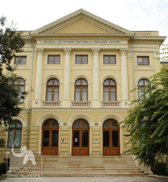 Academia Copiilor, Muzeul Antipa,  14 octombrie - 11 noiembrie 2012