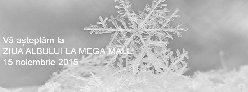 Ziua Albului, Mega Mall, 15 noiembrie
