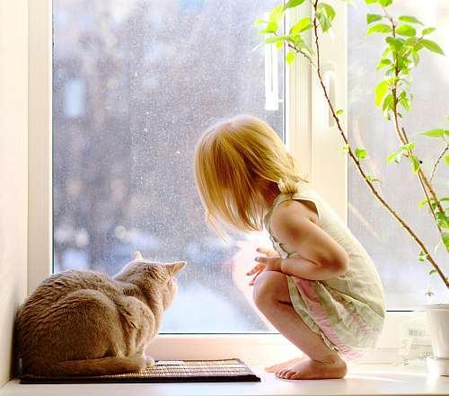Alergiile copiilor la animalele de companie