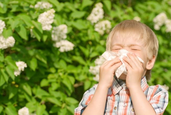 alergii-primavara-copii