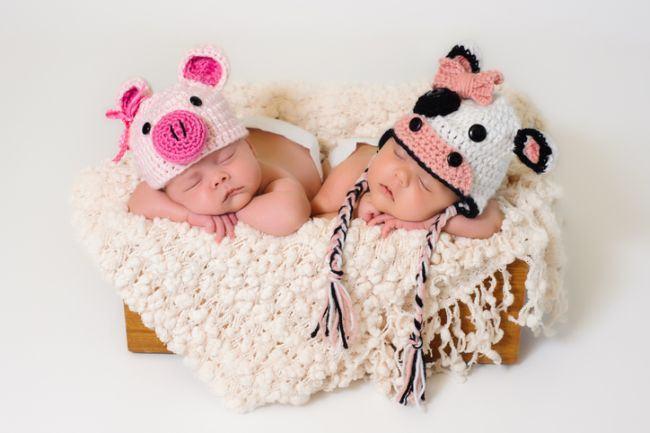 Ce trebuie sa stii despre copiii nascuti sub semnul zodiacal al Porcului, conform zodiacului chinezesc