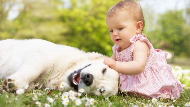 "Psiholog Mihaela Zaharia: ""Copiii care au animale de companie invata sa respecte regulile, sunt empatici"""