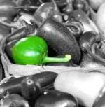 Caldura transforma alimentele in bombe toxice