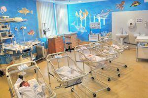 Gravidele care nasc la MedLife pot recolta gratuit celule stem