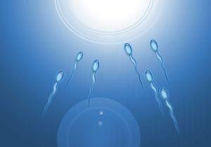 Infertilitatea cauzata de o gena