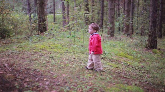 Un baietel de trei ani a supravietuit doua zile in padure. Spune ca l-a pazit un urs