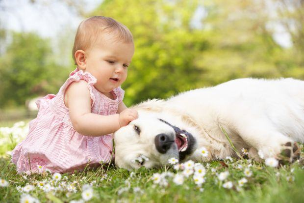 Plimbarea bebelusului in parc primavara, reguli si recomandari
