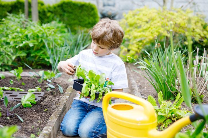 Beneficiile activitatilor de gradinarit pentru copii