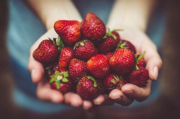 Ghid al fructelor de primavara