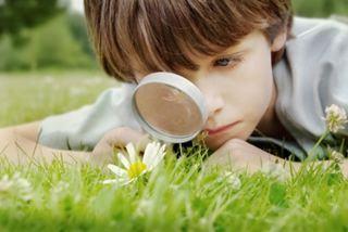 Dezvoltarea psihica a copilului la 6-11 ani