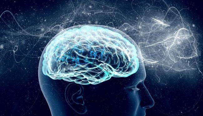 Este dovedit stiintific: creierul barbatului si al femeii sunt identice