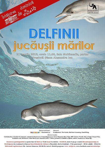 Delfinii, jucausii marilor!
