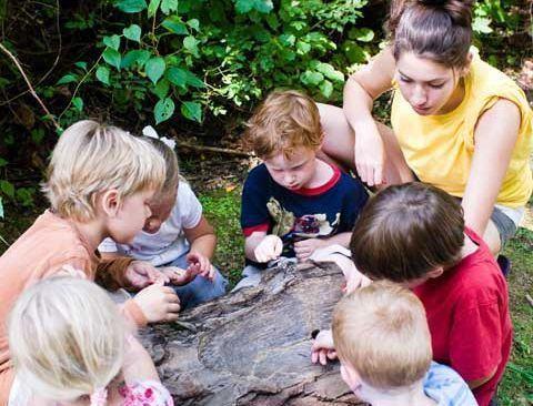 Educatia ecologica a copiilor