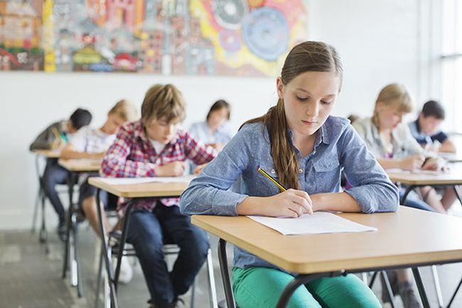Evaluarea Nationala 2019. Ce subiecte au avut de rezolvat elevii la limba romana