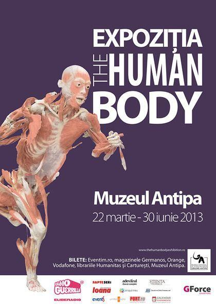 expozitia_the_human_body_antipa