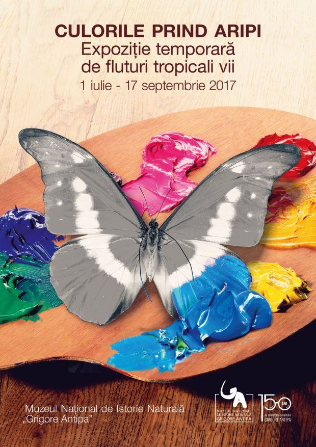 Culorile prind aripi la Muzeul Antipa - Viziteaza expozitia de fluturi tropicali vii intre 1 iulie si 17 septembrie