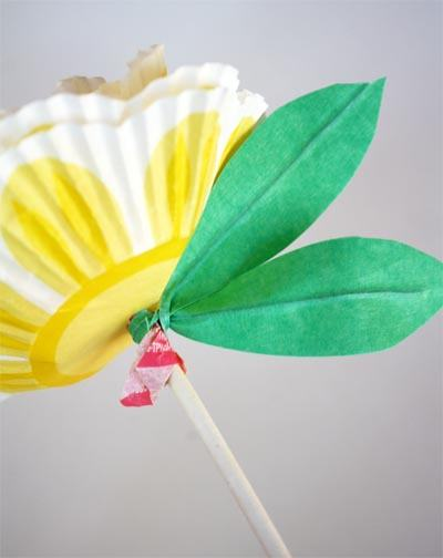floricele-acadele-pas-final