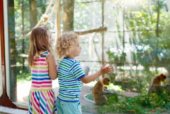 Locuri de iesit cu copiii in Bucuresti si pe langa Bucuresti