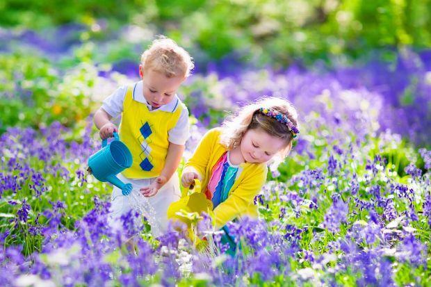Vitamina N - Beneficii ale activitatilor de gradinarit pentru copii