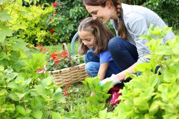 Cum ajuta intretinerea unei gradini la dezvoltarea micutului tau. 5 beneficii pe termen lung