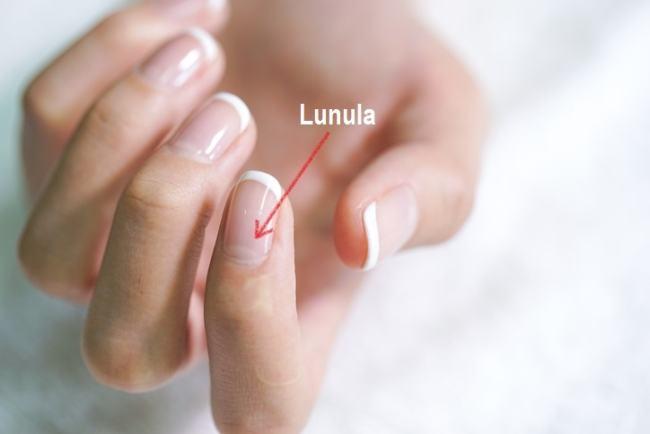 Ce spune semiluna de la baza unghiei despre sanatatea ta