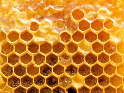 6 beneficii ale propolisului pentru sanatate