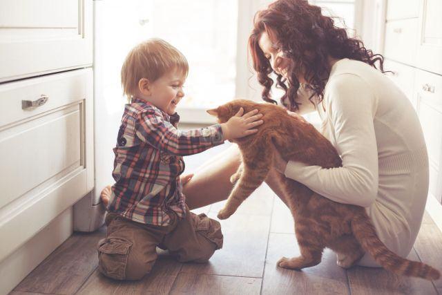 Cat de periculos este parul de animale pentru femeile gravide si pentru copii?