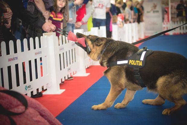 pet-expo-politie