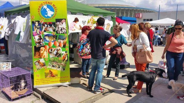 Sase asociatii vor lansa campania Adopta un caine la Pet Expo