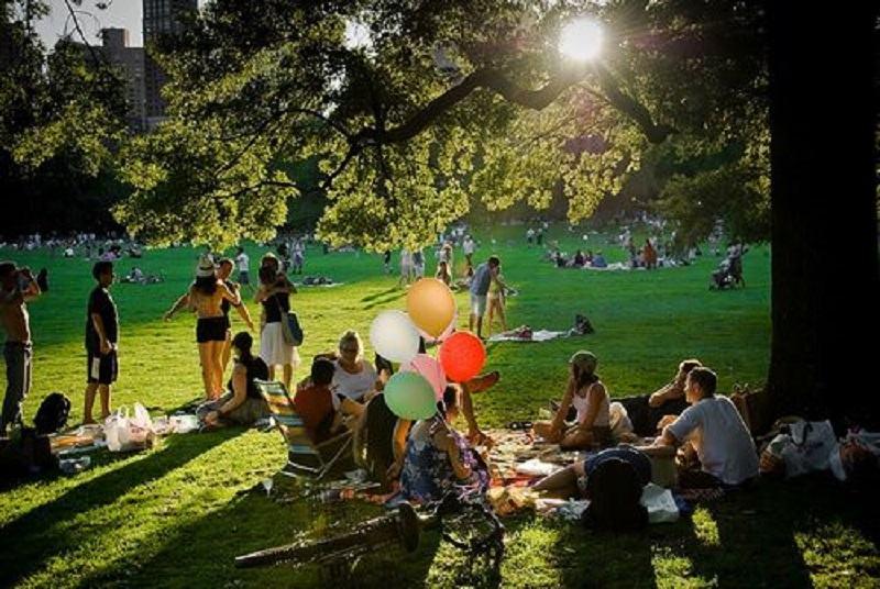 Ministrul Sanatatii da liber la picnicurile in parc. Dar cu o conditie