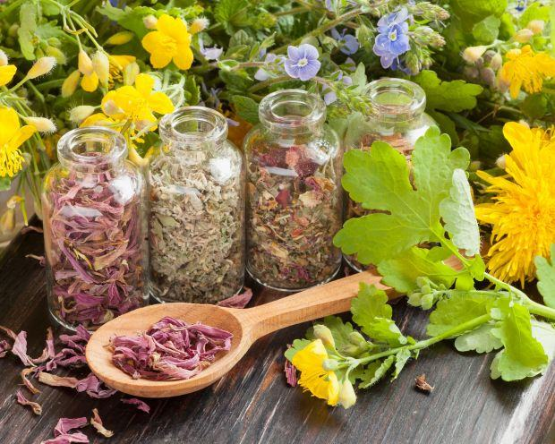 Consumul de plante in sarcina