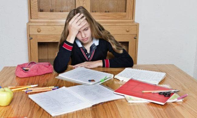 """Ecaterina Andronescu, despre temele pentru acasa ale elevilor: """"Este exagerat"""""""