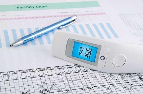 temperatura_bazala_fertilitate