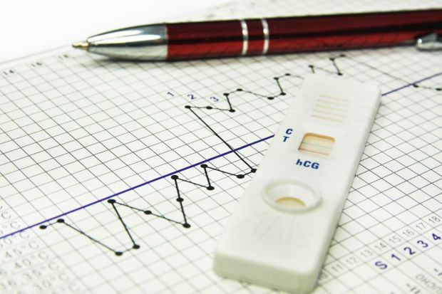 5 teste de sarcina pentru acasa