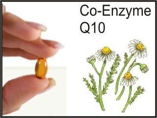 Coenzima Q10 si fertilitatea