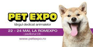 7 activitati de week-end cu copilul tau la Pet Expo