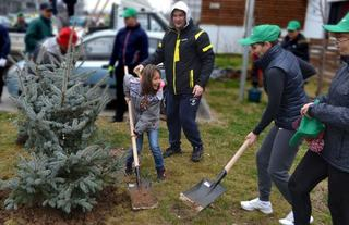 IMPACT planteaza 900 de copaci in complexul rezidential GREENFIELD