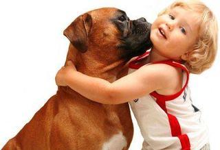 Relatia copilului cu animalul de companie