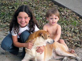 Reguli de siguranta pentru copii in preajma animalelor
