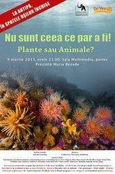 Nu sunt ceea ce par a fi: plante sau animale?