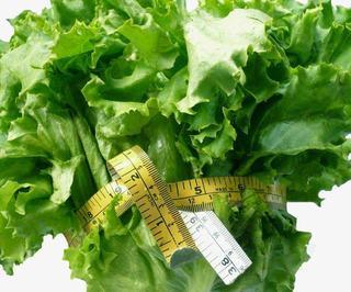 Dieta the Pritikin Principle