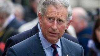 Printul Charles, ingrijorat pentru viitorul copilului lui Harry