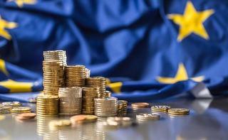Romania nu indeplineste criteriile pentru adoptie euro