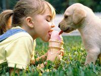 Infectii contractate de copii de la animalele de companie