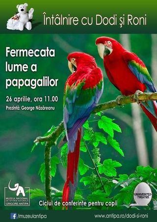 Fermecata lume a papagalilor, 26 aprilie 2015