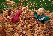 7 activitati de toamna pentru copii