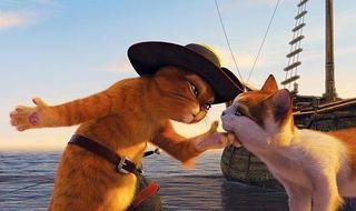 Minimest, Festivalul International de Film de Animatie Anim'est