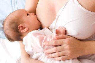 Colectarea laptelui matern