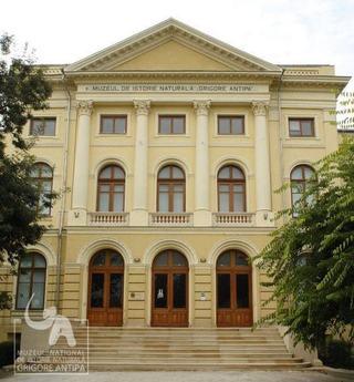 Academia Copiilor - Vara 2013, Muzeul Antipa